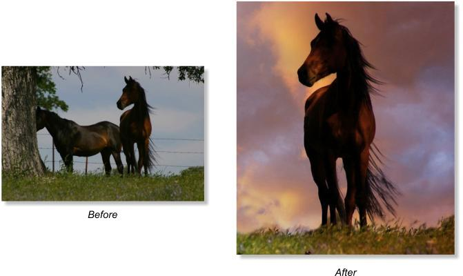 Picture Before and After Photo Elements